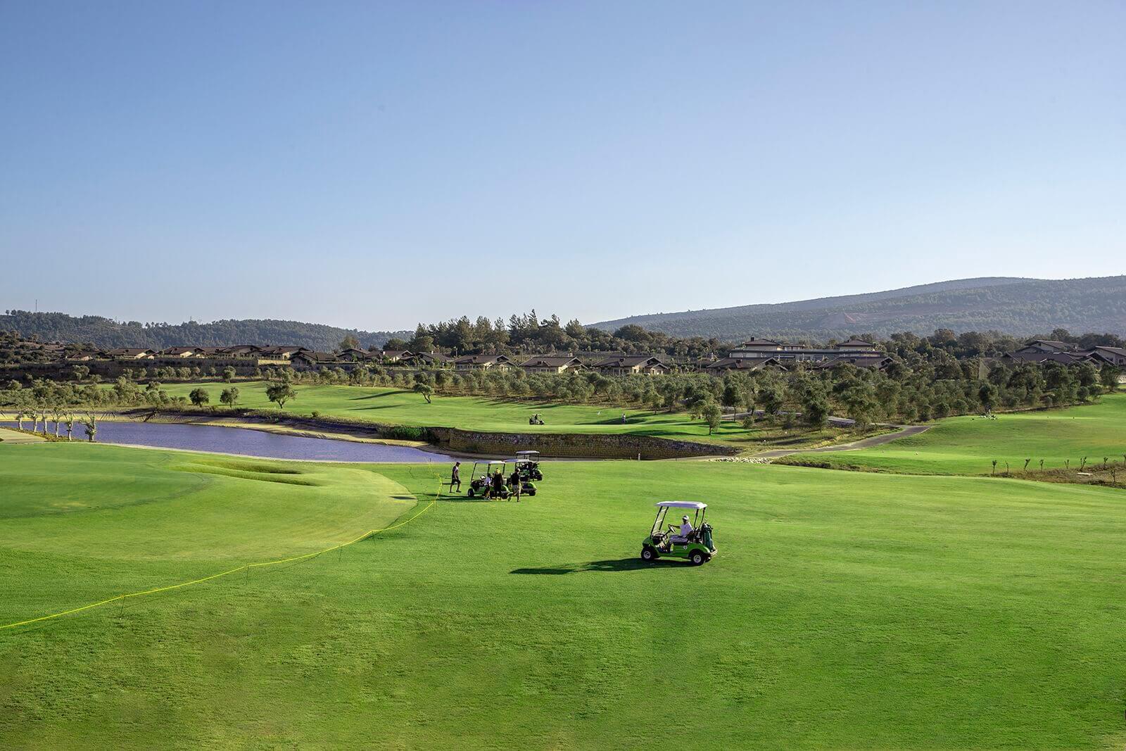 golfcart view